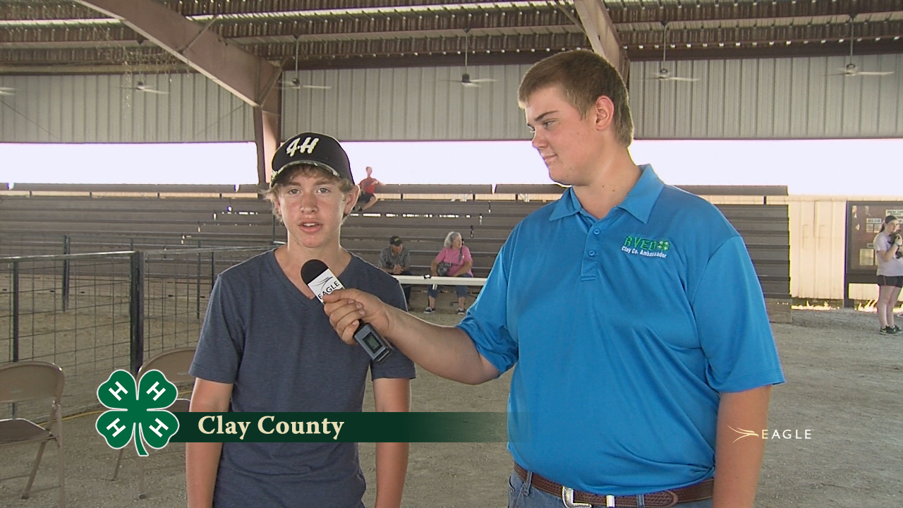 Clay County 4-H #1