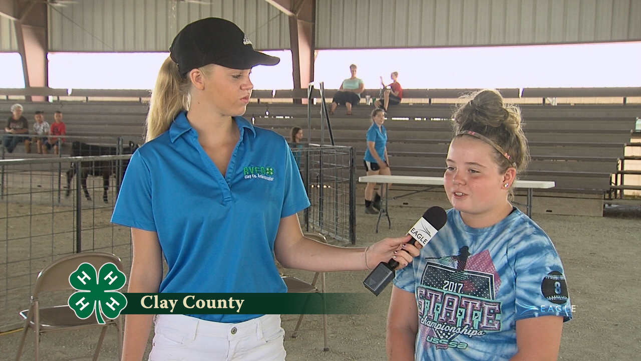 Clay County 4-H #2