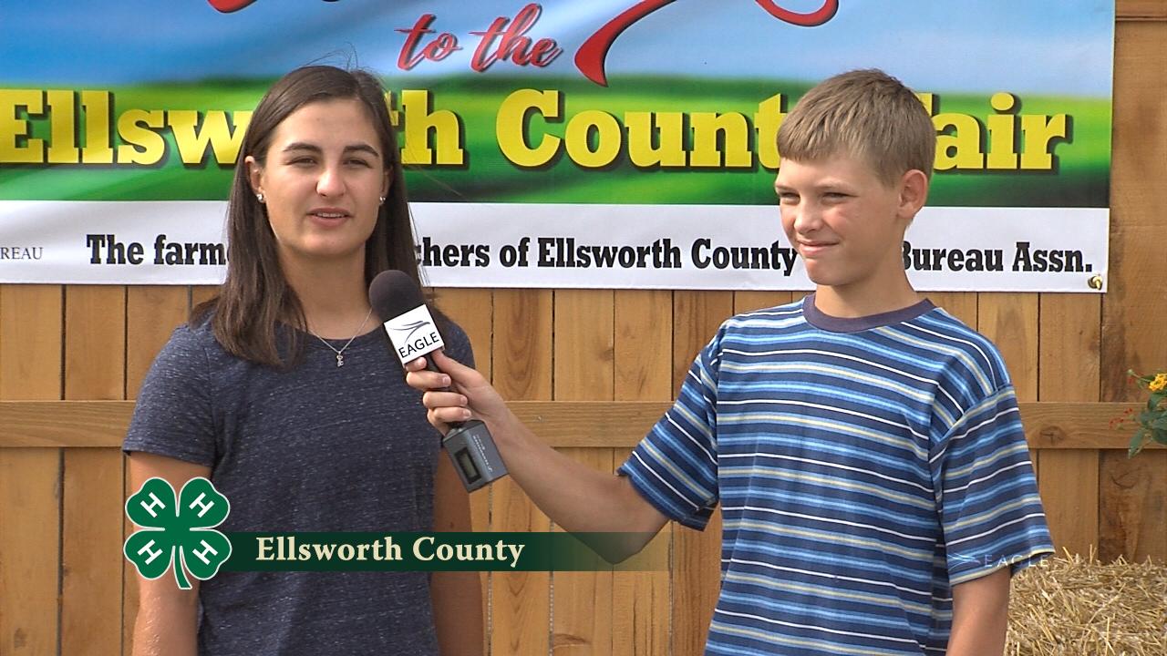 Ellsworth County 4-H #1
