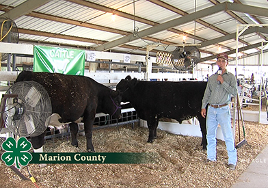 Marion County 4-H Interviews #1